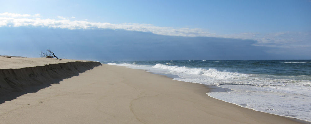 beach-header-bg